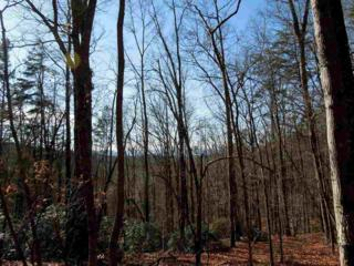 0  Cove Road  , Rutherfordton, NC 28139 (MLS #41580) :: Washburn Real Estate