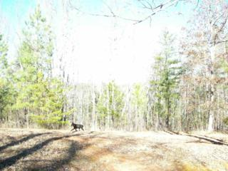 Union Mills, NC 28167 :: Washburn Real Estate