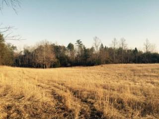 10.5 acres  Critter Crossing  , Lake Lure, NC 28746 (MLS #41727) :: Washburn Real Estate