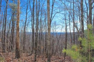 000  Hidden Valley Lane  , Ellenboro, NC 28040 (MLS #41792) :: Washburn Real Estate