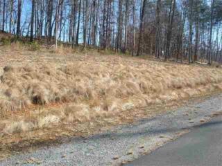 0  Cinnamon Ridge  , Rutherfordton, NC 28139 (MLS #41800) :: Washburn Real Estate