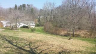 161  Merton Rd  , Lawndale, NC 28090 (MLS #41907) :: Washburn Real Estate