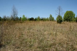 LOT 2  Dark Corner Road  , Rutherfordton, NC 28139 (MLS #41959) :: Washburn Real Estate