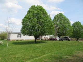 251  Old Mill Road  , Lake Lure, NC 28746 (MLS #41976) :: Washburn Real Estate