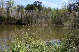 LOT 4  Dark Corner Road  , Rutherfordton, NC 28139 (MLS #41993) :: Washburn Real Estate