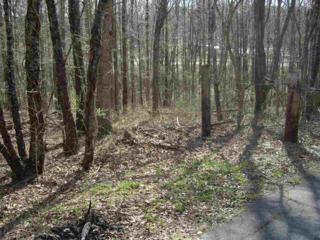 US 74 BYP Hwy  Us 74 Byp Hwy  , Forest City, NC 28043 (MLS #42000) :: Washburn Real Estate