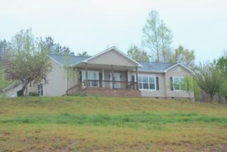 426  River Road  , Rutherfordton, NC 28139 (MLS #42002) :: Washburn Real Estate