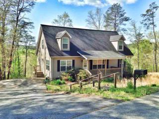 204  White Water Circle  , Rutherfordton, NC 28139 (MLS #42018) :: Washburn Real Estate