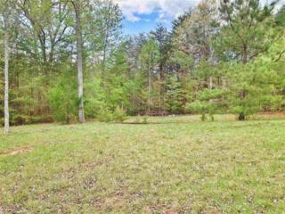 Lot 5  Wellington Drive  , Rutherfordton, NC 28139 (MLS #42028) :: Washburn Real Estate
