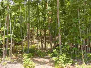 Bostic, NC 28018 :: Washburn Real Estate