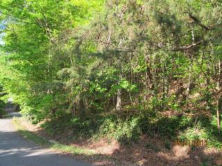 Lot 124  Snug Harbor Circle  , Lake Lure, NC 28746 (MLS #42069) :: Washburn Real Estate