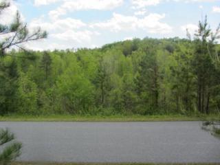 000  Chimney Creek Lane  , Rutherfordton, NC 28139 (MLS #42086) :: Washburn Real Estate