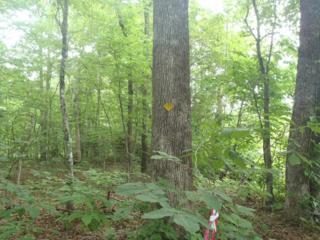 7 Acres on  Painters Gap Road  , Rutherfordton, NC 28139 (MLS #42125) :: Washburn Real Estate