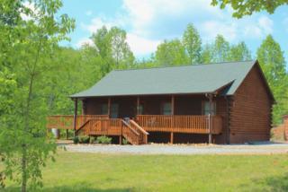 114  Woodstock Lane  , Rutherfordton, NC 28139 (MLS #42126) :: Washburn Real Estate