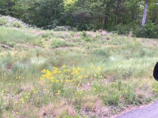 Lot 40  Estates At Greenhill  , Rutherfordton, NC 28139 (MLS #42131) :: Washburn Real Estate