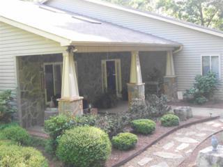 794  Moss Drive  , Rutherfordton, NC 28139 (MLS #42134) :: Washburn Real Estate