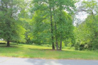 000  Knollwood Drive  , Forest City, NC 28403 (MLS #42171) :: Washburn Real Estate