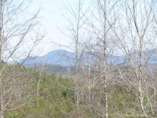 2 E Moss Rd  , Rutherfordton, NC 28139 (MLS #42184) :: Washburn Real Estate