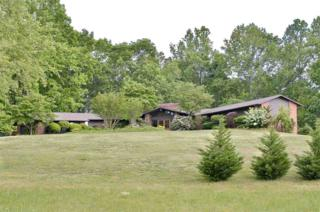 481  Pleasant Hill Road  , Rutherfordton, NC 28139 (MLS #42188) :: Washburn Real Estate