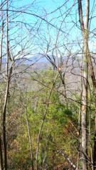 Rachel Ridge  , Lake Lure, NC 28746 (MLS #40624) :: Washburn Real Estate