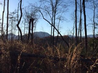 0  Bills Creek Road  , Lake Lure, NC 28746 (MLS #41506) :: Washburn Real Estate