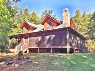 256  Adirondack Lane  , Bostic, NC 28018 (MLS #41913) :: Washburn Real Estate