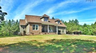219  Farmer Johns Trail  , Rutherfordton, NC 28139 (MLS #42189) :: Washburn Real Estate