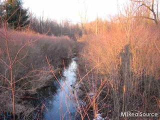 00  Natures Way Lot 4  , Saint Clair, MI 48079 (#31217548) :: Sine and Monaghan Realtors