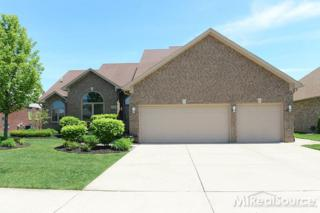 48148  Feral  , Macomb Twp, MI 48044 (MLS #31244390) :: The Tom Lipinski Team at Keller Williams Lakeside Market Center