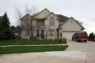 47045  Woodberry Estates  , Macomb Twp, MI 48044 (#31244615) :: Sine and Monaghan Realtors