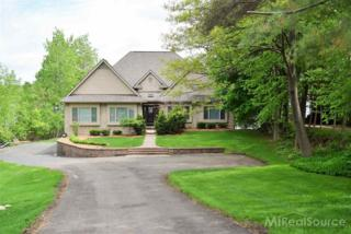 7710  Phelan Dr  , Clarkston, MI 48346 (MLS #31236417) :: The Tom Lipinski Team at Keller Williams Lakeside Market Center