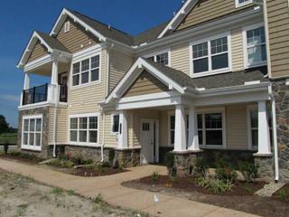 1152  Whitburn Terrace  415, Chesapeake, VA 23322 (#1438613) :: Abbitt Realty Co.
