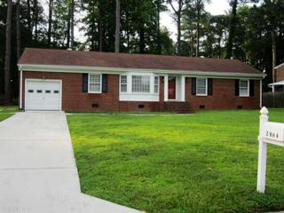 2864 E Meadow Wood Dr  , Chesapeake, VA 23321 (#1441390) :: All Pros Real Estate and All Pros Realty