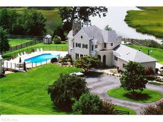 1521  Governors Wharf  , Suffolk, VA 23432 (#1450177) :: The Kris Weaver Real Estate Team