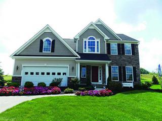 6028  John Jackson Drive  , James City County, VA 23188 (#1451152) :: Abbitt Realty Co.