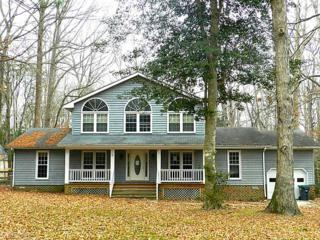 9017  Marmont Ln  , James City County, VA 23188 (#1503183) :: The Kris Weaver Real Estate Team