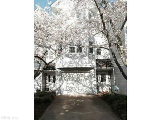 810  Baltic Walk  , Virginia Beach, VA 23451 (#1514111) :: The Kris Weaver Real Estate Team