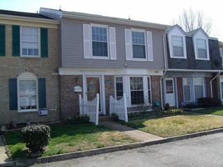 1033  Smoke Tree Ln  , Virginia Beach, VA 23452 (#1515087) :: All Pros Real Estate and All Pros Realty