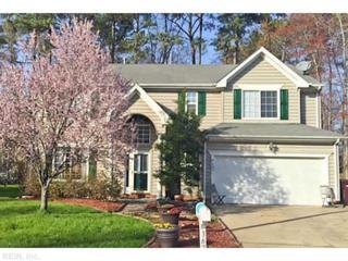 3671  Mardean Dr  , Chesapeake, VA 23321 (#1518036) :: The Kris Weaver Real Estate Team