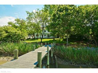6772  Burbage Landing Cir  , Suffolk, VA 23435 (#1523224) :: The Kris Weaver Real Estate Team