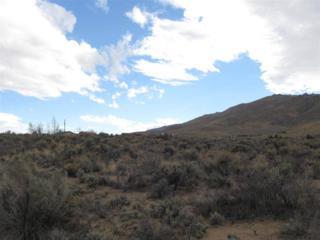22075 N Red Rock Rd  , Reno, NV 89508 (MLS #140014639) :: RE/MAX Realty Affiliates