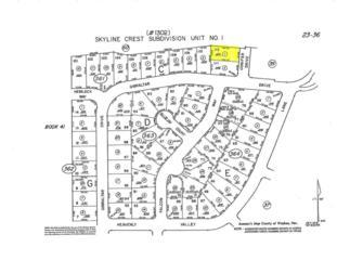 0  Conifer  , Reno, NV 89509 (MLS #150005217) :: RE/MAX Realty Affiliates