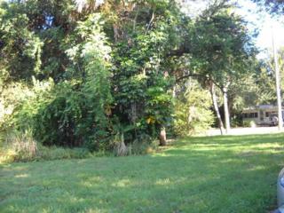 541 SW Halpatiokee Street  , Stuart, FL 34994 (#RX-10069099) :: Treasure Coast Home Sales