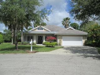 5267 SE Joshua Tree Terrace  , Hobe Sound, FL 33455 (#RX-10069125) :: Treasure Coast Home Sales