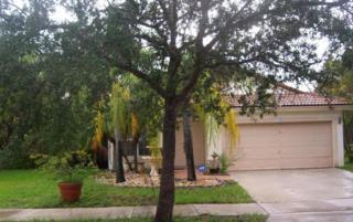 440 SW 203 Avenue  , Pembroke Pines, FL 33029 (#RX-10083594) :: The Carl Rizzuto Sales Team