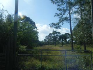 0 SW 95th Street  , Indiantown, FL 34956 (#RX-10089886) :: The Carl Rizzuto Sales Team