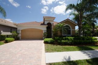 9067  Sand Pine Lane  , West Palm Beach, FL 33412 (#RX-10123712) :: The Torrance Group