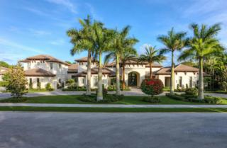 11606  Charisma Way  , Palm Beach Gardens, FL 33418 (#RX-10139151) :: The Torrance Group