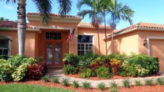 9790 SE Crape Myrtle Court  , Hobe Sound, FL 33455 (#RX-10067300) :: Treasure Coast Home Sales