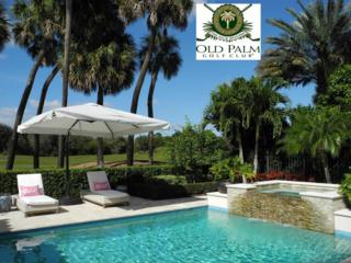 11505  Green Bayberry Drive  , Palm Beach Gardens, FL 33418 (#RX-10107079) :: The Torrance Group